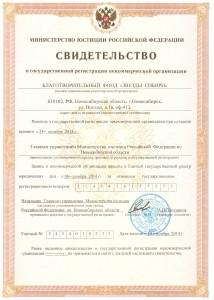 Свидетельство о государственой регистрации БФЗС